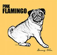 Cover Danny Vera - Pink Flamingo [DVD]